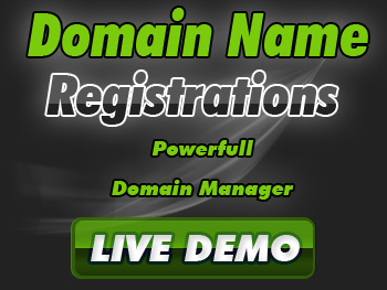 Budget domain name service providers